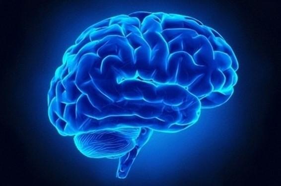 Como os pensamentos alteram o cérebro – A ciência explica